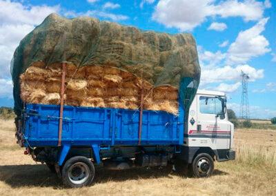 Transporte de alpacas arias