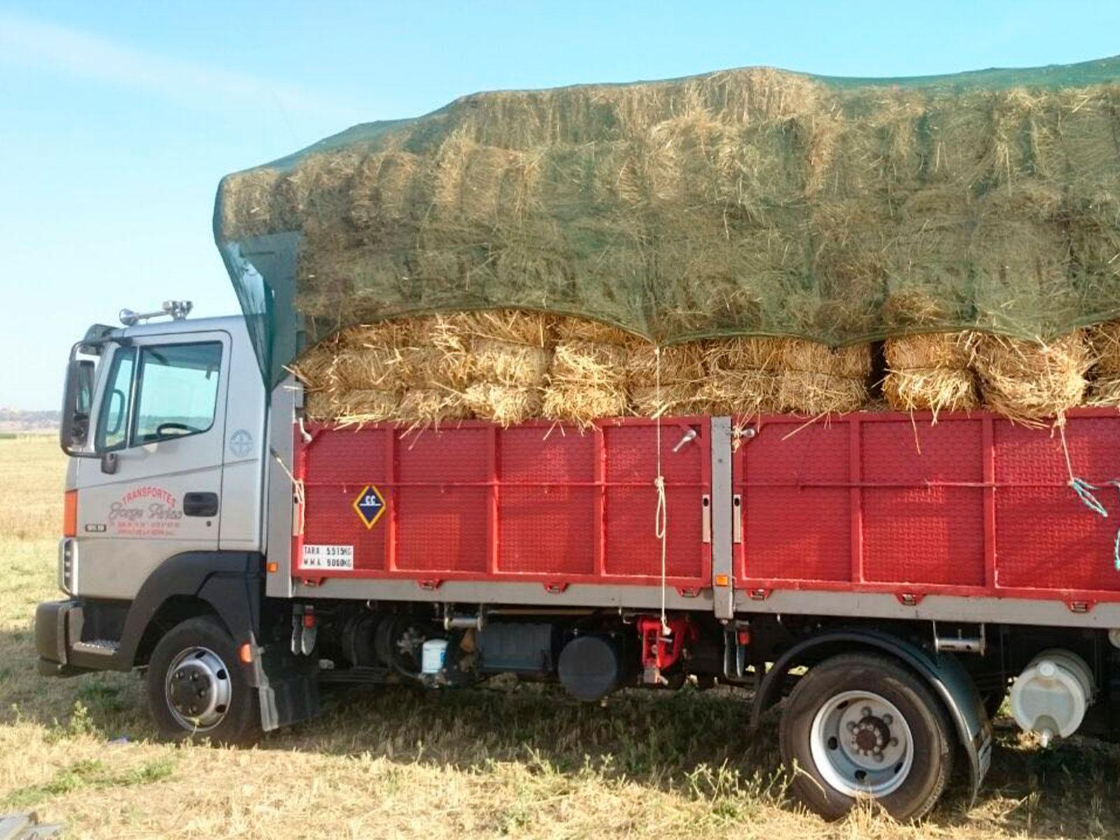 Transporte Arias y Sojo
