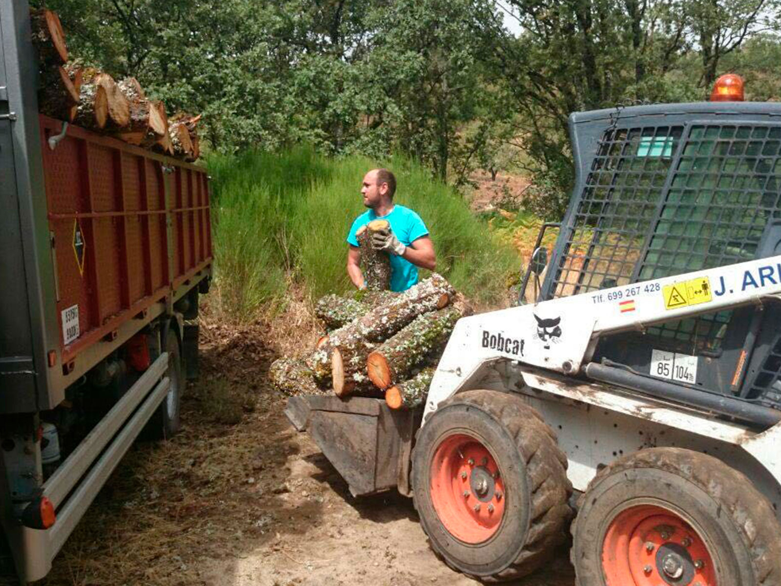 Transporte de leña Arias y Sojo